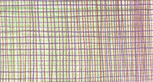 coloured pencils on paper, 12 x 22,1 cm